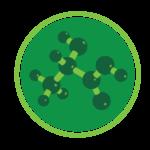 ortho-moleculair