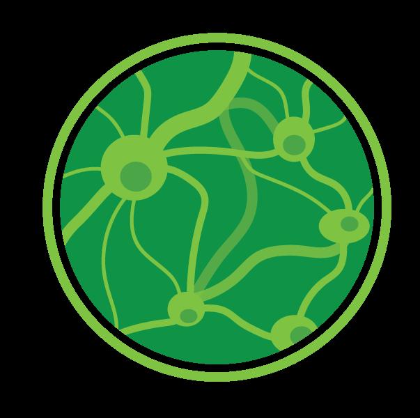 ortho-neuraal